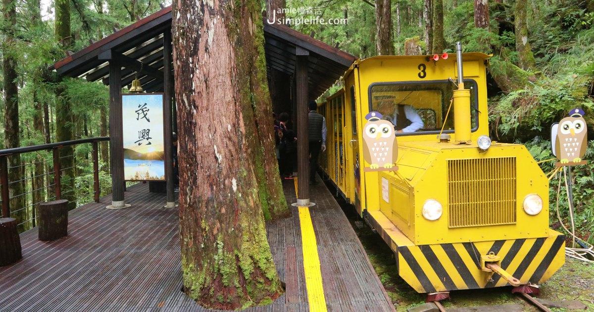 宜蘭大同|太平山國家森林遊樂區-蹦蹦車,搭上時光軌道聆聽森林大地心跳