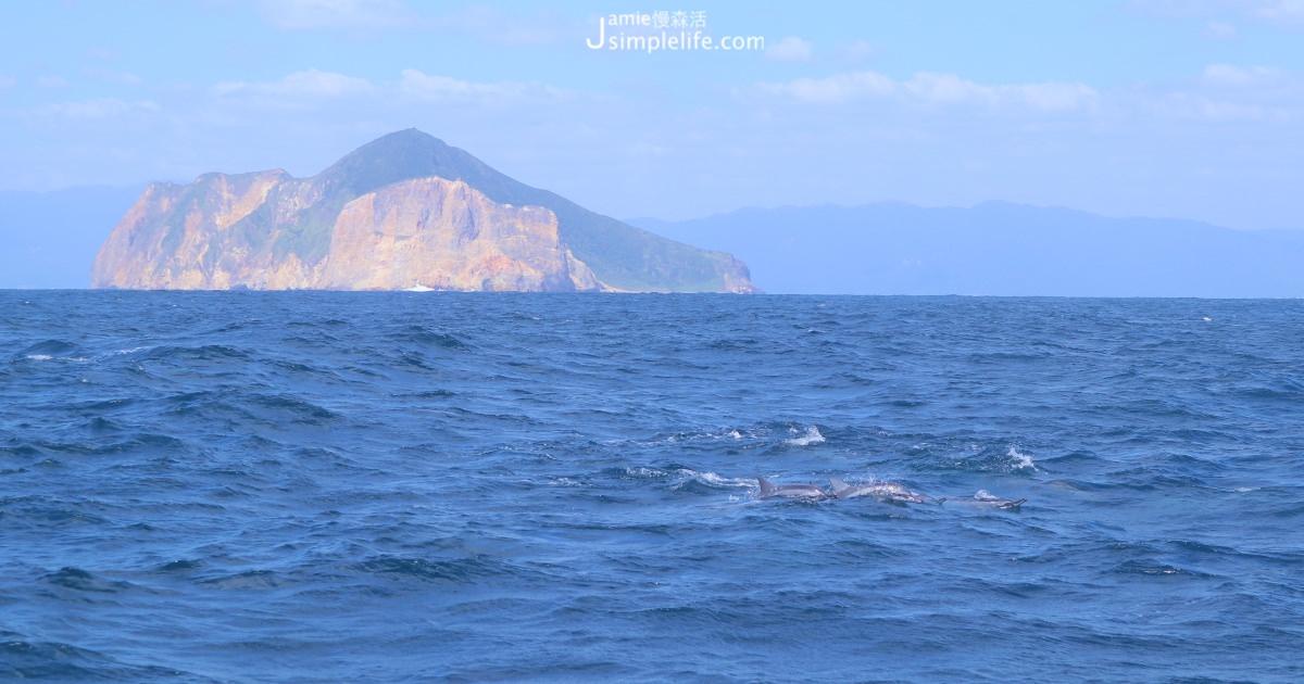宜蘭快樂出航!龜山島環島欣賞龜山八景、看鯨豚跳躍可愛舞姿