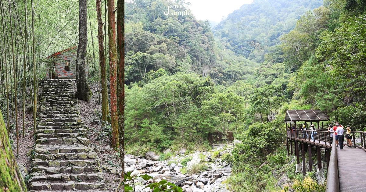 森林巴士天天出發:旅遊台中「八仙山國家森林遊樂區」一日、二日幸福森在其中的豐富生態